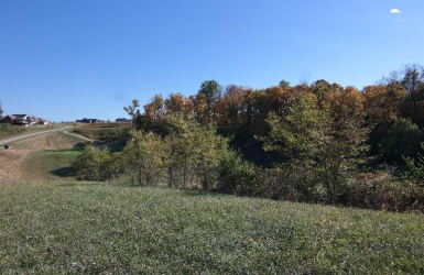 Augusta Drive, Lawrenceburg, IN 47025, ,Land,For Sale,Augusta,1520754
