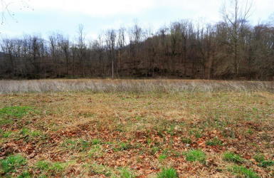 South Down Road, Green Twp, OH 45684, ,Land,For Sale,South Down,1616464