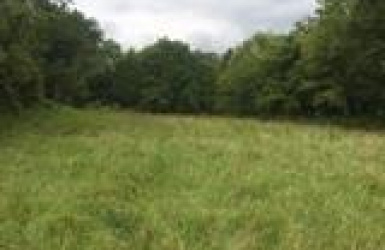 Jett Hill Road, Ohio Twp, OH 45157, ,Land,For Sale,Jett Hill,1607453