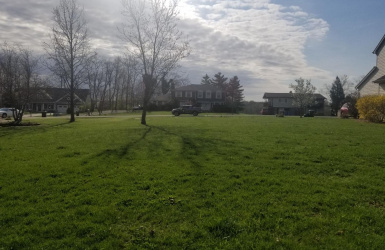 Newcom Knoll, Miller Twp, IN 47025, ,Land,For Sale,Newcom,1617443