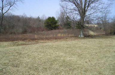 Pippin Road, Colerain Twp, OH 45231, ,Land,For Sale,Pippin,1612982