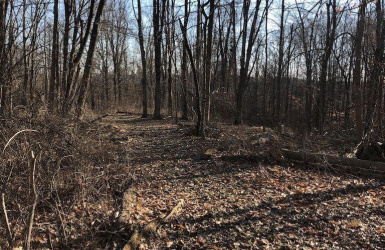 Given Road, Indian Hill, OH 45243, ,Land,For Sale,Given,1617980