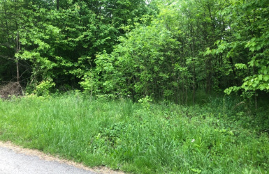 Taylor Road, Jackson Twp, OH 45176, ,For Sale,Taylor,1621984