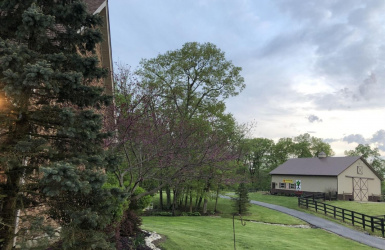 2075 Wood Road, Union Twp, OH 45036, 4 Bedrooms Bedrooms, ,4 BathroomsBathrooms,Home,For Sale,Wood,1624498