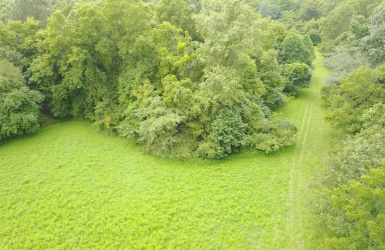 Butterworth Road, Hamilton Twp, OH 45140, ,Land,For Sale,Butterworth,1631570