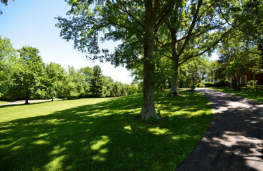 Cunningham Road, Indian Hill, OH 45243, ,Land,For Sale,Cunningham,1632168
