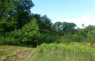 359 Madison Pike, Fort Wright, KY 41017, ,For Sale,359 Madison Pike,519822